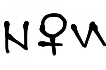 logo 1 SNOWE +