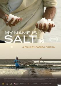 MGF_ Salt